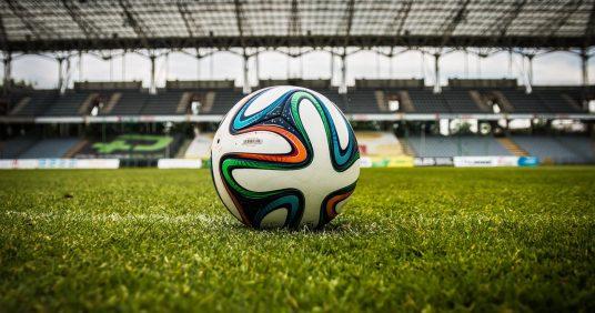 Kauza Davida Lafaty a zdanění profesionálních sportovců